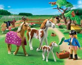 PLAYMOBIL ® Paddock with Horses and Foal