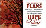 For I Know the Plans Glass Plaque