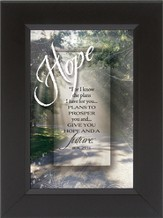 Hope, For I Know the Plans I Have For You Framed Print
