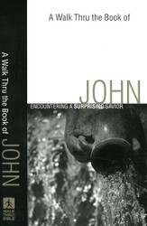 John: Encountering a Surprising Savior