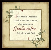 Grandmother Fun Framed Plaque, Gift Boxed