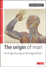 Origin of Man: The Image of An Ape or The Image of  God?