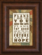 For I Know the Plans Mini Framed Print