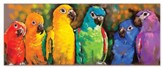 Parrot Rainbow Puzzle, 1000 Pieces