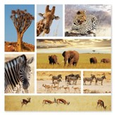 Safari Snapshots Puzzle, 1000 Pieces