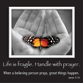 Picture Magnet, Butterfly, James 5:16