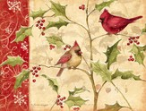Cardinals and Holly Christmas Cards, Box of 18