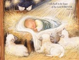 Baby Jesus and Sheep, Forever Christmas Cards, Box of 18