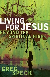 Living for Jesus Beyond the Spiritual High - eBook