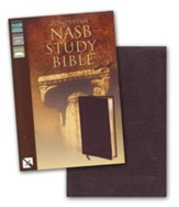 NAS Zondervan Study Bible, Bonded leather, Burgundy