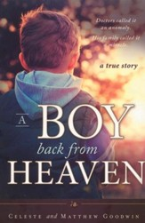 A Boy Back from Heaven
