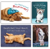 Fuzzy Friends, Box of 12 Assorted Get Well Cards