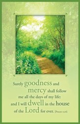 Goodness and Mercy Bulletins (Psalm 23:6)/100
