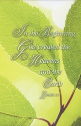 In The Beginning (Genesis 1:1, NIV) Bulletins, 100