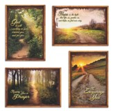 Peaceful Pathways, Box of 12 Assorted Encouragement Cards