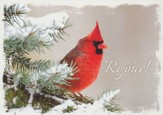 Nature Sings, Box of 12 Christmas Cards (KJV)