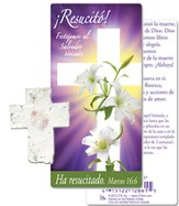 ¡Resucitó! Cruz de Semillas Plantable y Marcador  de Libro (Risen! Plantable Seed Cross and Bookmark)