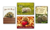 Lovable Hedgehogs (KJV) Box of 12 Assorted All Occasion Cards