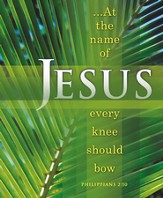 At the Name of Jesus, Every Knee Should Bow (Philippians 2:10) Large Bulletins, 100