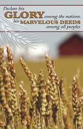 Declare His Glory Among the Nations, Pack of 50 Bulletins
