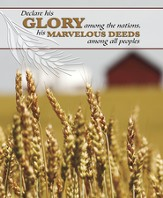 Declare His Glory Among the Nations, Pack of 100 Large Bulletins