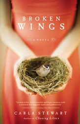Broken Wings: A Novel - eBook