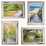 Along His Path, Box of 12 Assorted Birthday Cards (KJV)