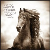 The Lord Is My Strength and My Shield Framed Art
