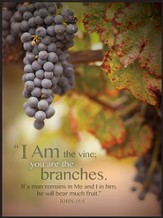 I Am the Vine, You Are the Branches Framed Art