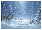 Savor the Beauty Christmas Card, Pack of 20
