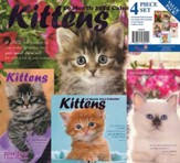 2014 Kittens Calendar Value Pack