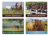 Peaceful Pastures Birthday Cards, Box of 12