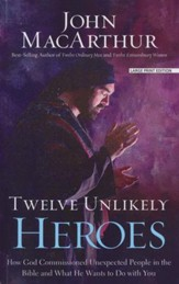 Twelve Unlikely Heroes, Large print