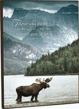Alaskan Spirit, Those Who Hope In the Lord Framed Art