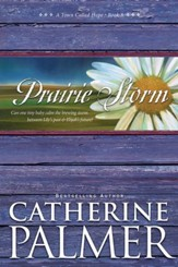 Prairie Storm - eBook