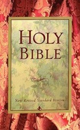 NRSV Holy Bible, Paper