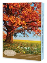 Held by the Lord, Praying For You Card Assortment, Box of 12