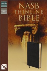 NAS Thinline Bible, Bonded leather, Black