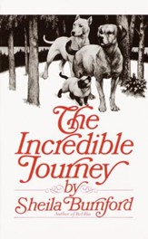 The Incredible Journey - eBook