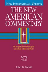 The New American Commentary Volume 26 - Acts - eBook