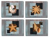 Westport Shells Birthday for Him Cards, Box of 12