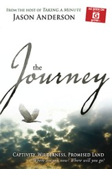 Journey: Captivity, Wilderness, Promised Land, Where are you now? Where will you Go? - eBook