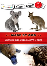 Curious Creatures Down Under - eBook