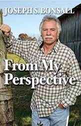 From My Perspective - eBook