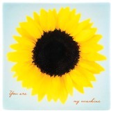 You Are My Sunshine Tile