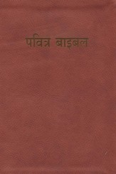 Hindi BibleL-Easy-To-Read, Paper, Red/Tan