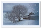 Be Still, Box of 20 Christmas Cards