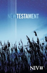 NIV Outreach New Testament, Trade Paperback