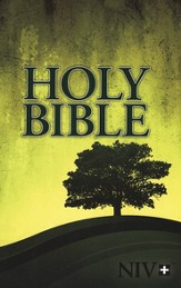 NIV Outreach Bible: Holy Bible, 24 copies