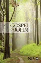 NIV Large-Print Gospel of John--softcover, path